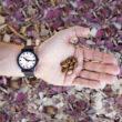 Reloj SBB essence con semillas de ricino